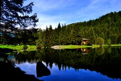 Lake of the deer. Reflections in the lake of roes Stock Image