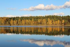 Lake in a delightful autumn forest at sunny day. Autumn trees with reflection. Russia. royalty free stock images