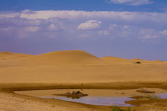 Lake in desert of china Royalty Free Stock Photography