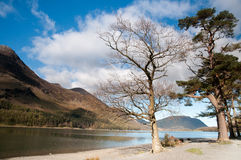 Lake District Royalty Free Stock Photo