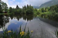 Lake in district allgäu. Bavaria Germany Royalty Free Stock Photos