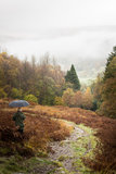 Lake district, autumn Stock Image