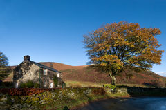 Lake district countryside. Stone house and a tree in Mungrisdale a village in lake district Stock Image