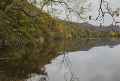 Lake District, Cumbria - autumnal forest around a lake. This image shows a view of a lake qin Cumbria, Lake District, England, the UK. It was taken on a dark stock photo