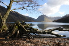 Lake District Cumbria England. A scenic view across Buttermere in the Lake District, Cumbria, England with Fleetwith Pike in the background Stock Photo