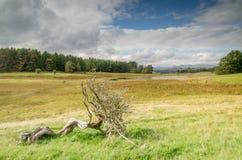 Lake district in Cumbria england uk kernow Stock Photos