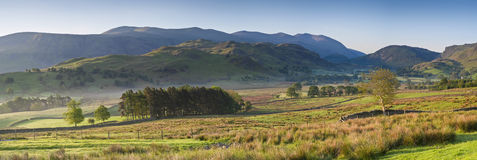 Lake District, Cumbria, UK. Warm misty morning light illuminating idyllic rural landscape of gently rolling hills, dry stone walls and pretty woodland, Lake Stock Photos