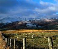 The Lake District England. Stock Photos