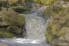 Free Lake District, England: Aira Force Waterfall Royalty Free Stock Images - 57115359