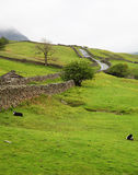 Lake District landscape royalty free stock images