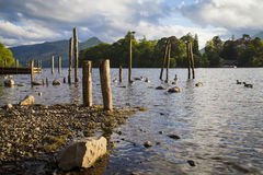 Lake District landscape. On the shores of Derwentwater near Keswick Royalty Free Stock Images