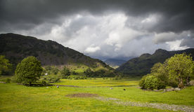 Lake District landscape. Typical landscape in Lake District, Cumbria Royalty Free Stock Photography