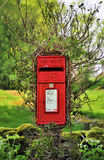 Lake district, mailbox. A rural Lake district post box, encircled by shrub growth, against an ancient dry stone wall Stock Image