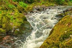 Lake District ,Mountain Stream Royalty Free Stock Photo