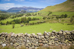 Lake District. Typical landscape in Lake District, Cumbria Stock Image