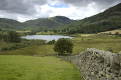 Lake district,uk. Landscape in lake district, uk Stock Images