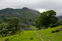 Lake District view. The green hills and mountains of Little Langdale in the Lake District, Cumbria, England Royalty Free Stock Images