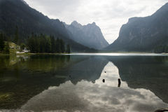 Lake Dobbiaco Dolomites Italy Stock Photography