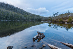 Lake Dobson surrounded by native vegetation. Mount Field Nationa Royalty Free Stock Photography