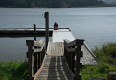 Lake Dock. This is a lake dock in the Oregon mountains Royalty Free Stock Image