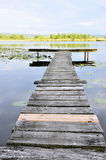 Lake, dock and water lilies Stock Photos