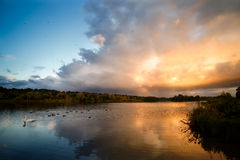 Lake With Dramatic Clouds, Birds And Autumn Trees. A wide angle view of an expansive lake with dramatic orange, grey and white clouds above and reflected in the royalty free stock photo