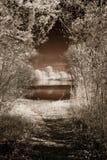 Lake of dreams Stock Photo