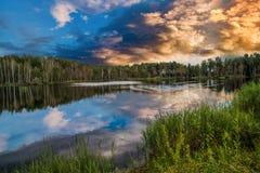 Lake with ducks. Royalty Free Stock Image