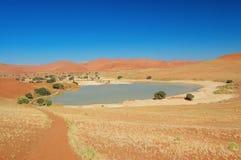 Lake in dunes of Namib desert, Namibia Stock Images