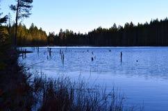 Lake at dusk Stock Image