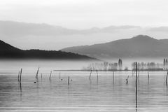 A lake at dusk, with soft tones, distant hills and mountains,and. Some plants and wooden poles in the middle of mist Stock Photos