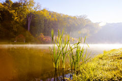Lake in the early autumn morning. In Kiev Royalty Free Stock Photography