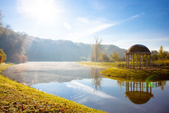 Lake in the early autumn morning. In Kiev Royalty Free Stock Image