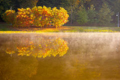 Lake in the early autumn morning Stock Photos