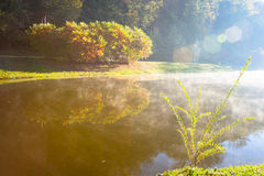 Lake in the early autumn morning. In Kiev Royalty Free Stock Photo