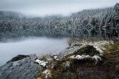 Lake in the early morning frost Stock Photography