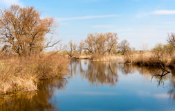 Lake in early sping time Royalty Free Stock Image