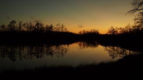 Lake efter solnedgång royaltyfri fotografi