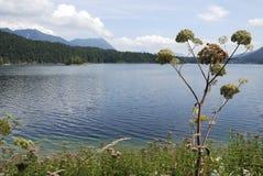 Lake Eibsee Royalty Free Stock Photos