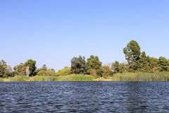 In the lake of El Dorado East Regional Park Royalty Free Stock Photos
