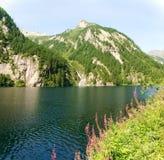 Lake of elder Royalty Free Stock Photos