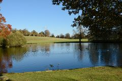 Lake in English parkland Royalty Free Stock Photo