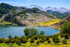 Lake Enol in summer. Asturias Royalty Free Stock Photography