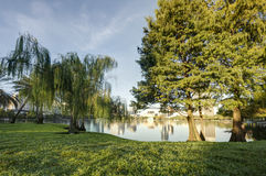 Lake Eola Park. In Orlando, Florida in the Early Morning Royalty Free Stock Images