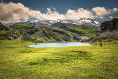 Lake Ercina. Cantabrian. Covadonga. Asturias. Spain. Royalty Free Stock Photo