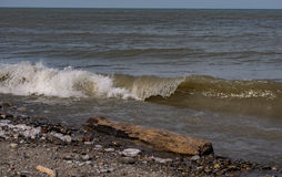 Lake Erie Rocky and Wet Shore Royalty Free Stock Image