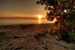 Lake Erie soluppgång Arkivbilder