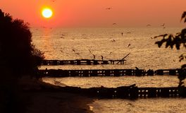 Lake Erie Sunset Royalty Free Stock Images