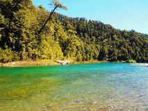 Lake Espejo Chico. Colorful and natural forest. Patagonia Argentina stock images