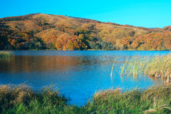 Lake in the evening. Lake in the autumn evening royalty free stock photos